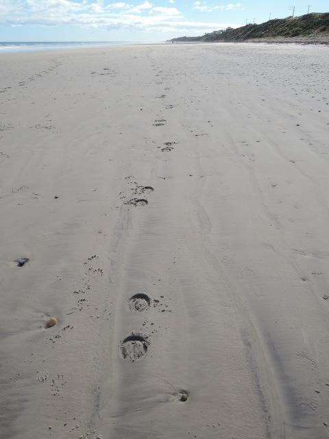 Path across the sand