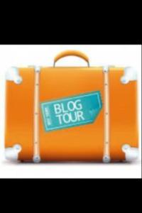blog tour award 2015